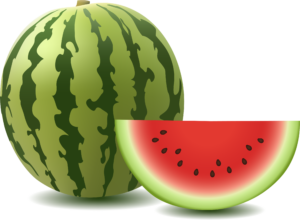 watermelon_PNG2654